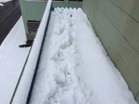 屋根雪下ろし採寸1